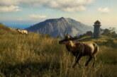 The Hunter: Call of the Wild drar till Midgård – kolla in Nya Zeeland-dlc:t!